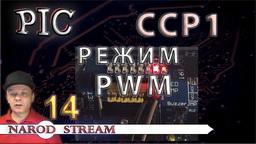 PIC Модуль CCP. Режим PWM